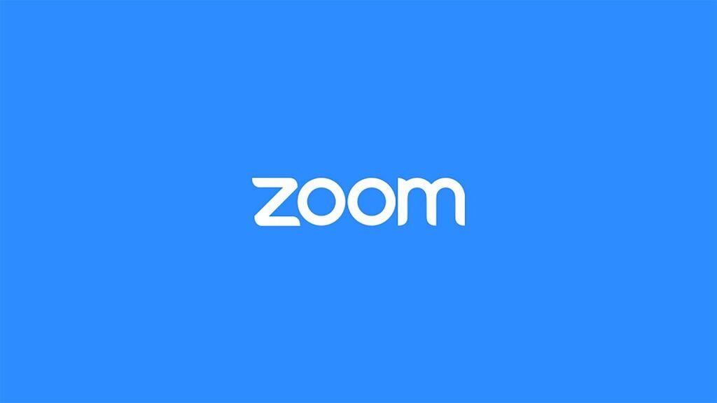 Cuánto cuesta Zoom pro