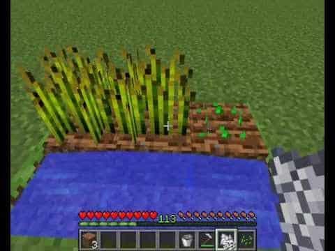 ¿Como se pueden encontrar aldeas en Minecraft?