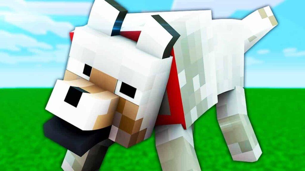 ¿Donde se pueden encontrar lobos en Minecraft?